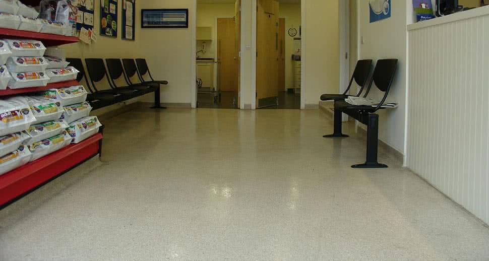 Vet waiting room resin floor